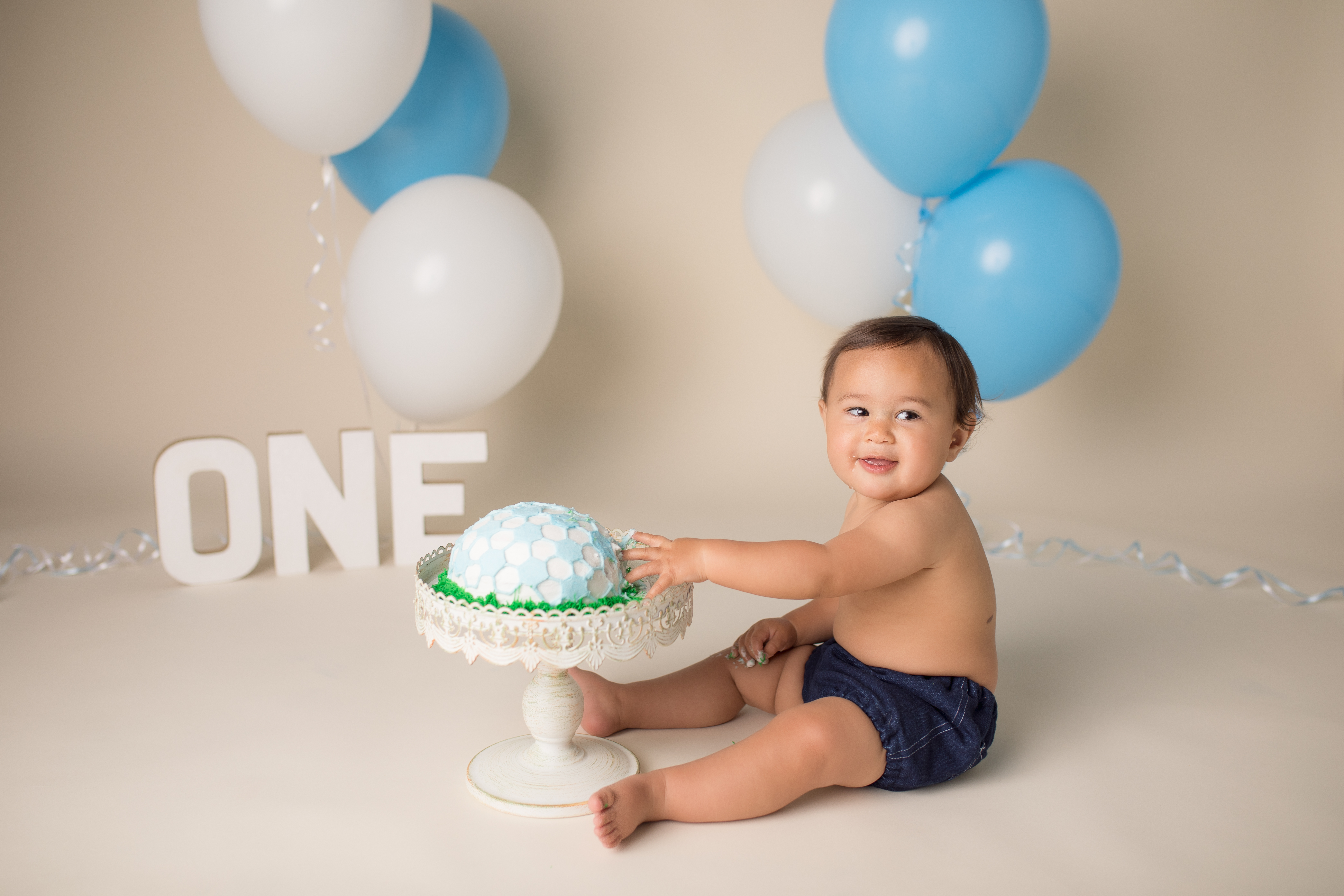 Novi Michigan cake smash one year photography session-