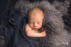 Novi Michigan Newborn Photography--9