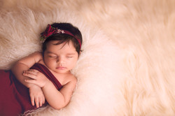 Hartland Michigan Baby Photographer--2