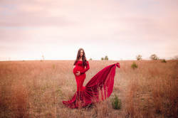 Ann Arbor Michigan Pregnancy Photography--3