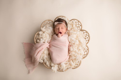 Ann Arbor Michigan Newborn Baby Photogra
