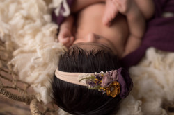 Northville Michigan Newborn Photographer--3