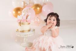 Ann Arbor Michigan One Year Baby Cake Smash Boho Lifestyle Photography Studio--20