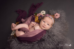 Brighton Michigan Newborn Baby Photograp