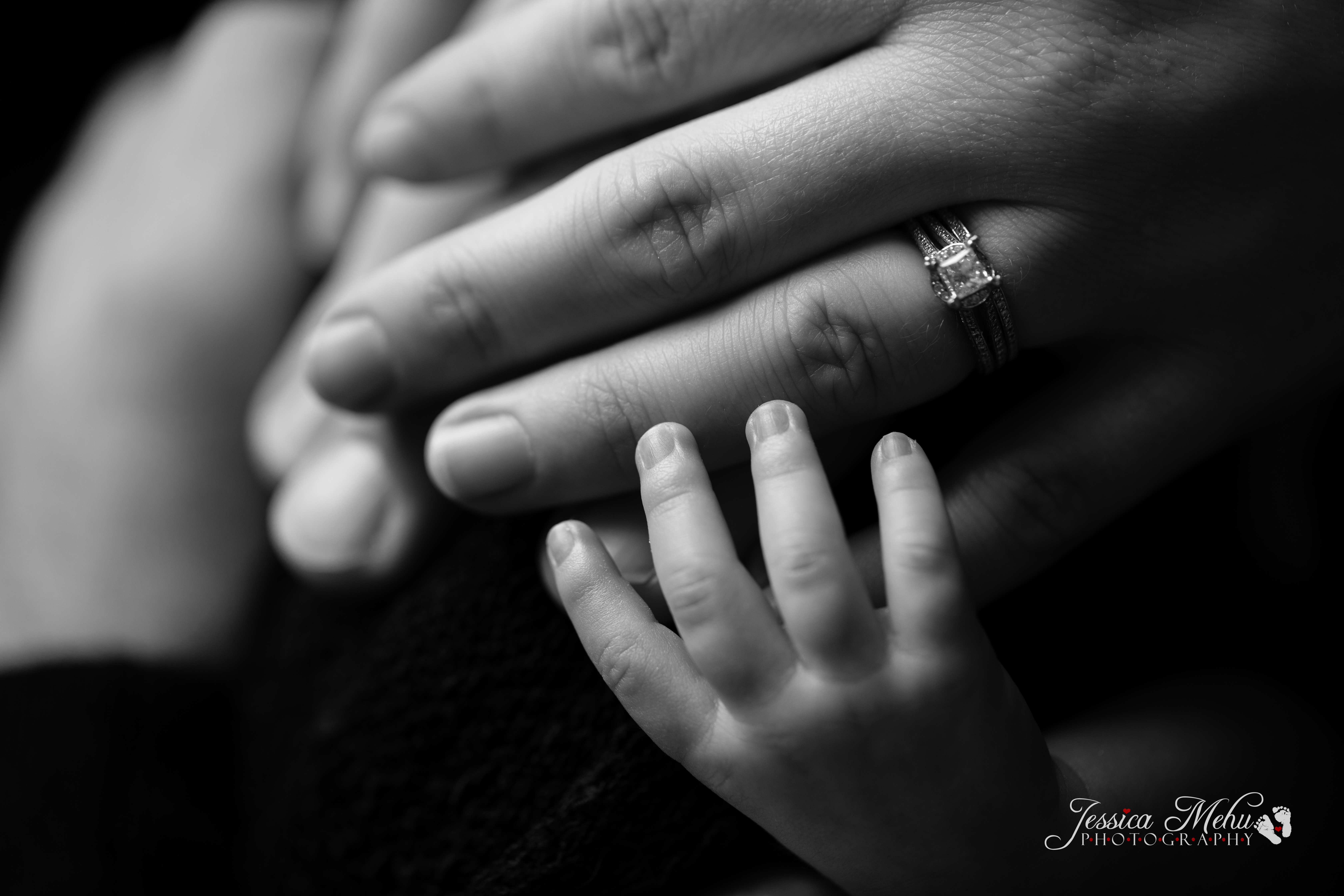 Novi Michigan Newborn Photography-