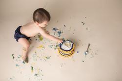 Michigan Cake Smash Photography--7