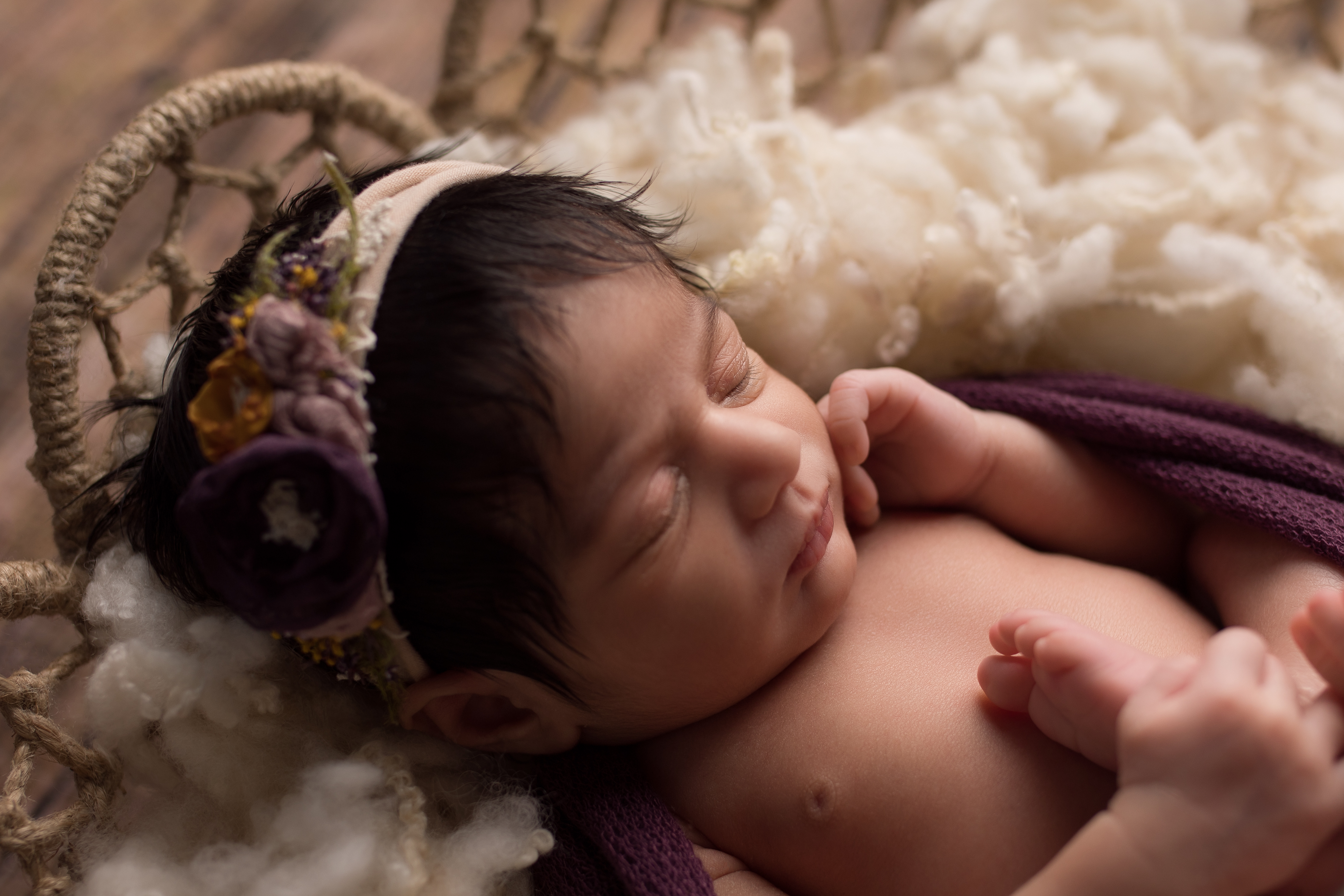 Northville Michigan Newborn Photographer--2
