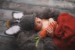Canton Michigan Newborn Photographer--6