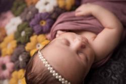 Belleville Michigan Newborn Photography--6