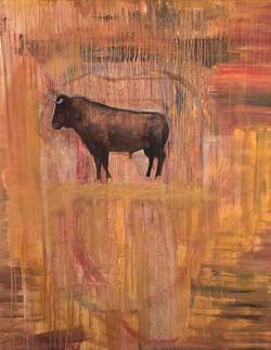 Bull 48x60 13,000