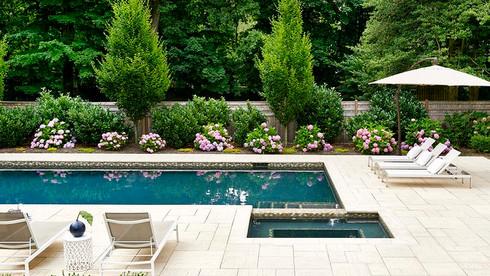 Poolside Elegance
