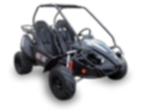 hammerhead-150gts-buggy-with-usa-specs-b