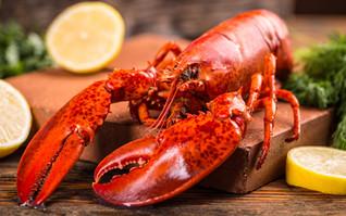 lobster425-1.jpg