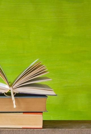 Dibabox -book.jpg