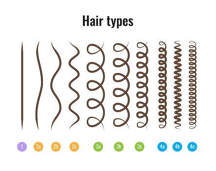 Dibabox-hairtype.jpg