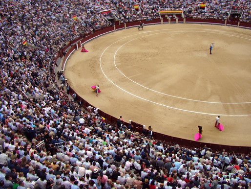 Bullfighting Not Protected By Copyright