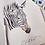 Thumbnail: Zebra original