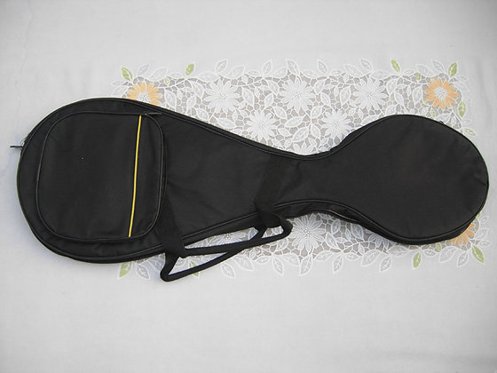 Pipa carrying case