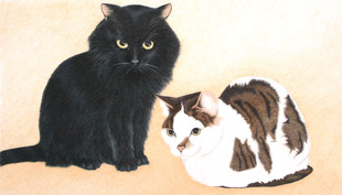 Bud's cats.jpg