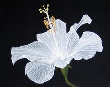white elegance.JPG
