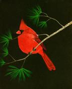 ws cardinal smaller file.jpg