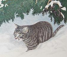 Camille's cat.jpg
