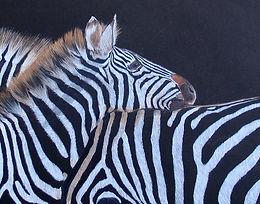 Claire-zebra.JPG