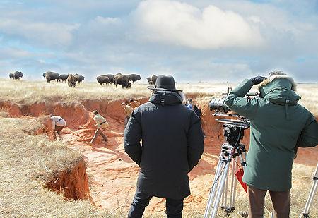 filmmaking_IMG_5862editedsky.jpg
