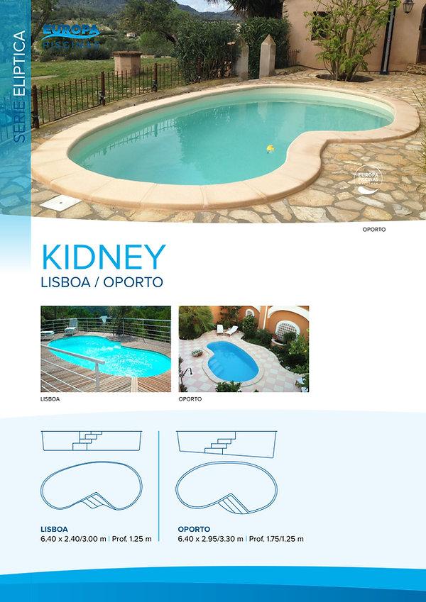 kidney2_elíptica.jpg