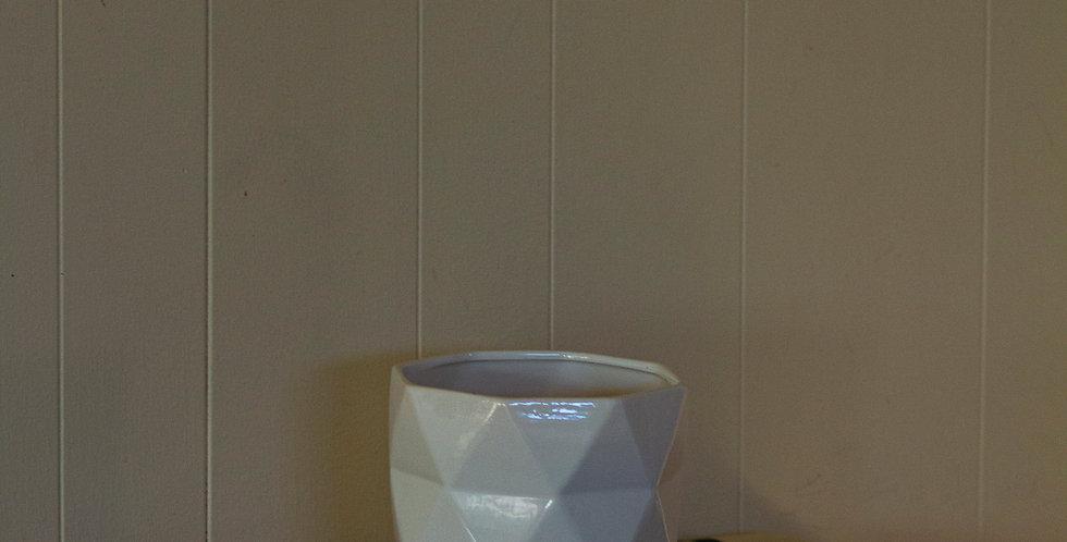 6 Inch Geometric Pots