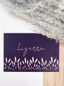 Lizette