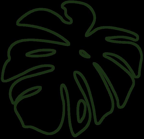 rand2-groen.png