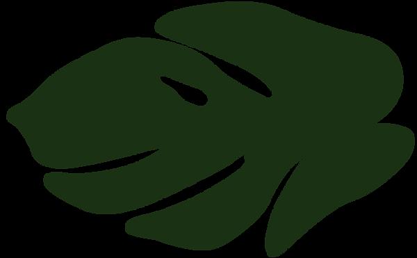blad2-groen.png