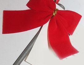Christmas Nail - Photo.jpg