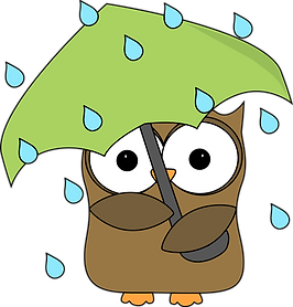 owl-in-the-rain.png