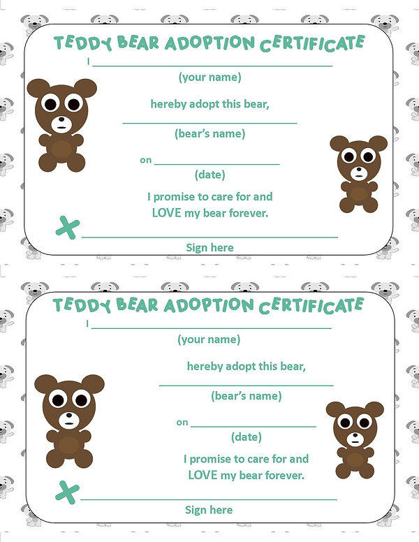 Adoption Form Teddy Bear.jpg