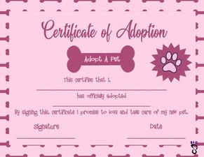 Certificate of Adoption - Girl.jpg