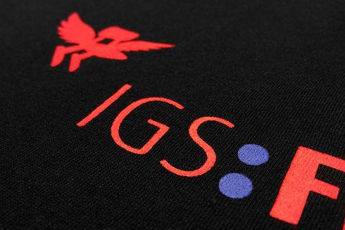 Detail-IGS-FF.jpg