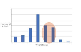 Optiweigh - V3 Optimise your sale weights Chart.jpg