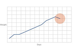v2 Optiweigh - Graph 2 - Average Daily Weight.jpg