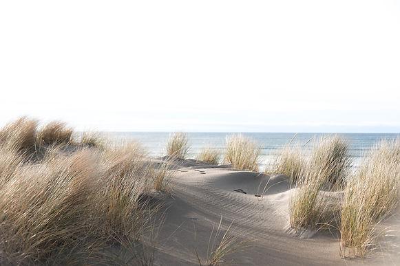 Sea grass sways in the Cannon Beach ocea
