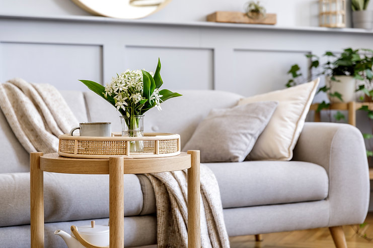 Interior design of scandinavian living r