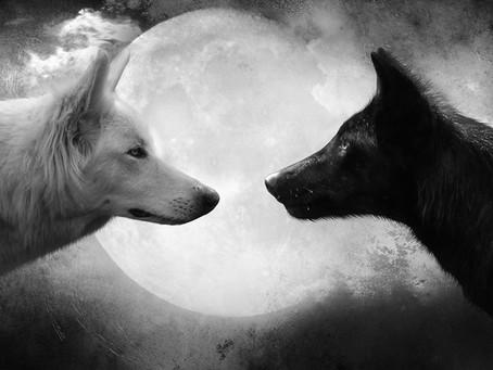 La légende des 2 loups