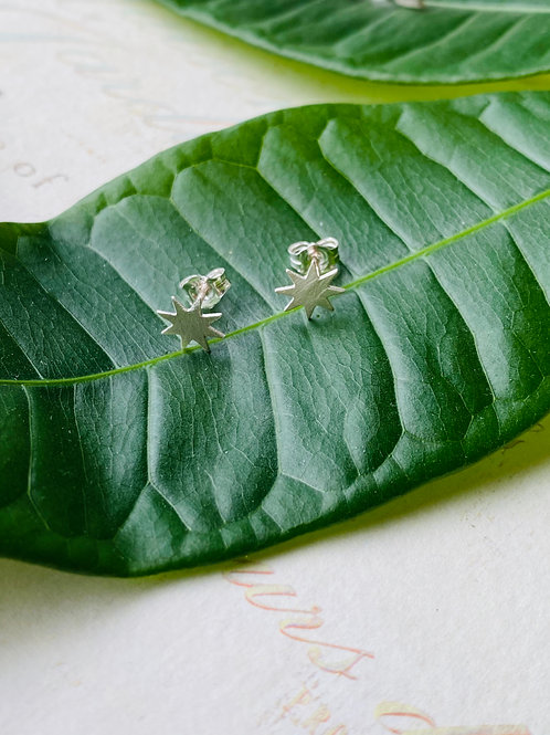 Sterling Silver Synergy Earrings
