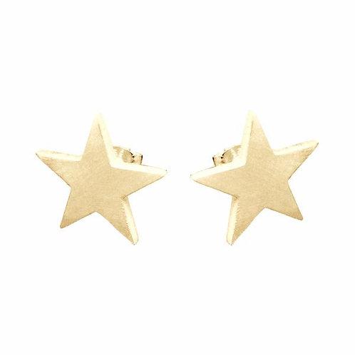 Sterling Silver 5-Point Star Earrings
