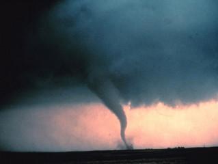 Style Snapshot: The Tornado