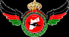 Jordan_Air_Ambulance_Center_logo.png