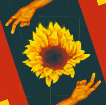 Sunflower :: ひまわり