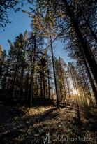 finland-0624.jpg