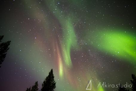 finland-0469.jpg